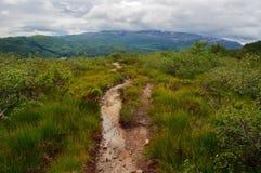 Пешеходная дорожка в горах стоковое фото rf
