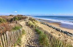 Пешеходная дорожка на атлантической дюне в Бретани Стоковые Изображения RF