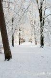 Пешеходная дорожка Snowy Стоковое фото RF