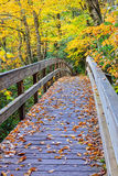 Пешеходный мост в горах Северной Каролине Стоковое фото RF