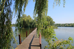 Пешеходный мост к зеленому острову в середине озера Стоковое Изображение
