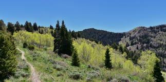 Пешие взгляды пути гор Oquirrh вдоль гор Уосата передних скалистых, медным рудником Kennecott Рио Tinto, Tooele и Стоковые Изображения RF