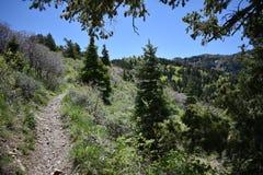 Пешие взгляды пути гор Oquirrh вдоль гор Уосата передних скалистых, медным рудником Kennecott Рио Tinto, Tooele и Стоковая Фотография RF