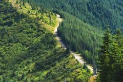 Пеший пик замка в национальном лесе Gifford Pinchot Стоковые Фотографии RF