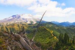 Пеший пик замка в национальном лесе Gifford Pinchot Стоковое фото RF