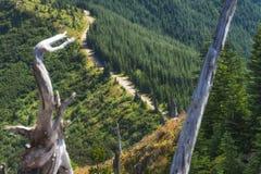 Пеший пик замка в национальном лесе Gifford Pinchot Стоковое Фото