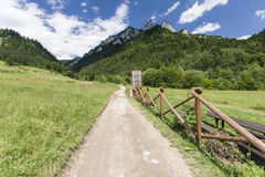 Пеший путь в горах Pieniny Стоковая Фотография
