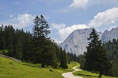 Пеший путь с голубым небом и красивым ландшафтом Стоковые Фотографии RF