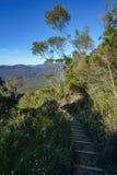 Пеший туризм большой прогулки clifftop, голубые горы, Австралия 7 стоковое изображение rf