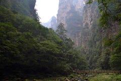 Пеший туризм вокруг парка в живописной местности Wulingyuan Greenies каждые Стоковое Изображение