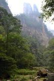 Пеший туризм вокруг парка в живописной местности Wulingyuan Greenies каждые Стоковое фото RF