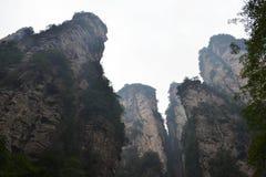 Пеший туризм вокруг парка в живописной местности Wulingyuan Greenies каждые Стоковая Фотография RF