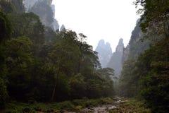 Пеший туризм вокруг парка в живописной местности Wulingyuan Greenies каждые Стоковые Изображения