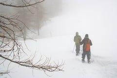 Пеший туризм в белом лесе Стоковое фото RF