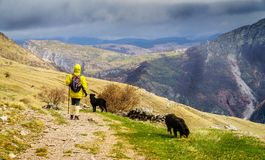 Пеший туризм в боснийских горах Стоковая Фотография RF