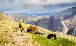 Пеший туризм в боснийских горах Стоковые Фото