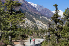 Пеший туризм в горах Гималаев, Непал Стоковое Фото