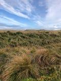 Пеший туризм в горах Исландии стоковые изображения rf