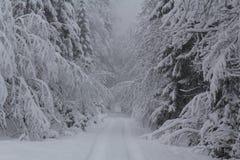 Пеший туризм в зиме Стоковые Фотографии RF
