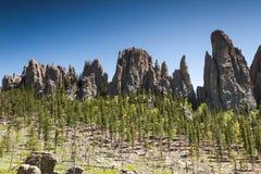 Пеший туризм в парке штата Custer, Южная Дакота стоковая фотография rf