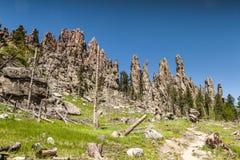 Пеший туризм в парке штата Custer, Южная Дакота стоковое изображение rf