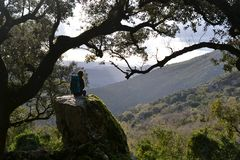 Пеший туризм в природном парке Сьерра de Grazalema, провинция Кадис, Андалусии, Испании, к Benamahoma стоковое фото rf