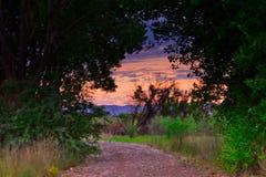 Пеший туризм на восходе солнца в июле стоковое фото rf