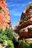 Пеший туризм через каньон на заводи Тейлора в национальном парке Сиона стоковые изображения rf