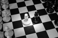 2 пешки одной шахмат напротив другой Начало сражения Стоковое Фото