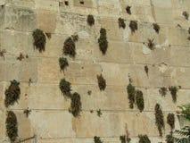 Пещера патриарх в Хевроне, Израиле Стоковые Изображения