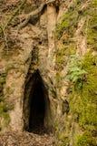 Пещера Annincaurums Стоковое фото RF