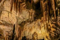 Пещера Postojna, Словения Пещера внутренности образований с сталактитами и сталагмитами Стоковое Фото