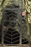 Пещеры По-отцовски национальный парк стоковое изображение