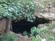 Пещеры Cuevas del Drach в Майорке Стоковое Фото