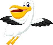 пеликан Стоковое Фото
