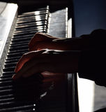Пианист с музыкальным инструментом рояля классическим Стоковое Изображение RF