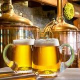 2 пива в винзаводе Стоковое Изображение