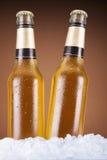 2 пива Стоковые Изображения