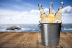 Пивные бутылки в льде на предпосылке пляжа Стоковые Изображения RF