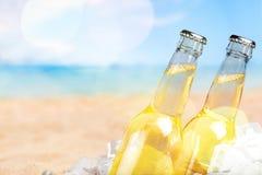 Пивные бутылки в льде на предпосылке пляжа Стоковая Фотография RF