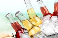 Пивные бутылки в льде на предпосылке пляжа Стоковое Изображение