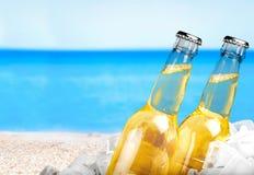 Пивные бутылки в льде на предпосылке Стоковые Изображения RF
