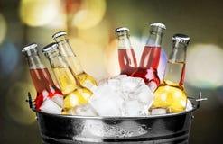 Пивные бутылки в льде на светлой предпосылке Стоковое Изображение