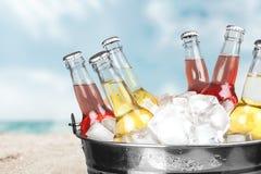 Пивные бутылки в льде на светлой предпосылке Стоковые Изображения RF
