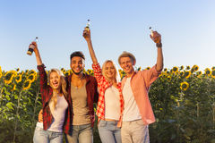 Пивные бутылки людей выпивая собирают поле солнцецветов сельской местности друзей внешнее Стоковое Изображение RF