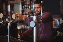 Пиво бара нежное заполняя от насоса бара Стоковые Изображения