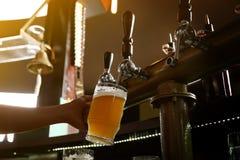 Пиво бармена лить от крана в стекло стоковые фотографии rf