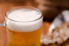 Пиво в стекле кружки с фасолью на деревянной таблице Стоковое фото RF
