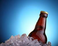 Пиво в льде Стоковое Фото