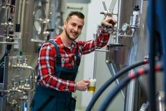 Пиво испытания винодела Стоковые Фотографии RF